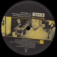 Spylab - Loveless (16B Vs. Floppy Sounds Remixes)