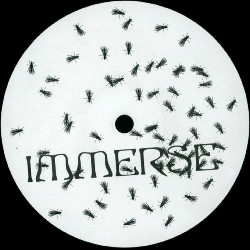 immerse001a